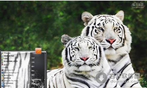 惊异白色老虎电脑桌面主题 简体中文官方安装版 [原产