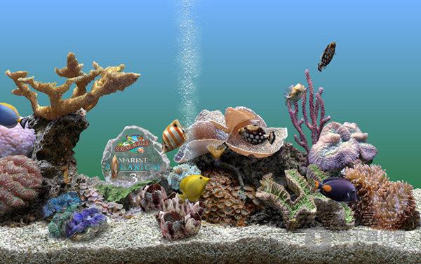 aquarium(3d热带鱼水族箱屏保)图片