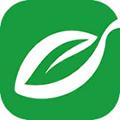 汕头橄榄台 V3.0.2 安卓版
