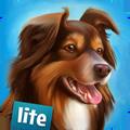 我的寄宿狗屋修改版 V1.3.4 安卓版