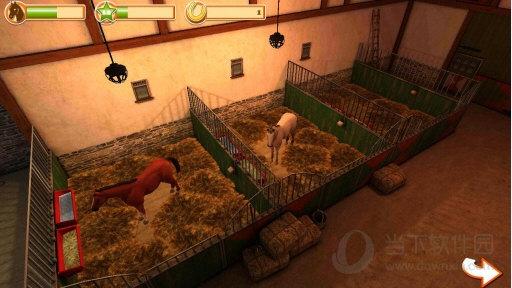 马的世界3D我的坐骑无限金币版