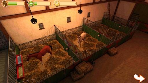 马的世界3D我的坐骑修改版 V1.5 安卓版截图2