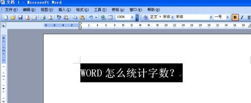 word主界面