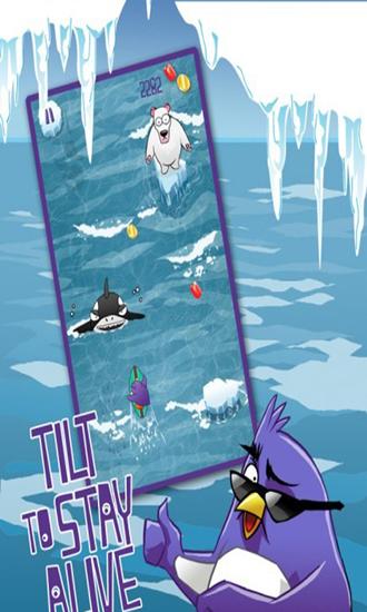 企鹅冲浪冒险修改版 V1.0 安卓版截图3