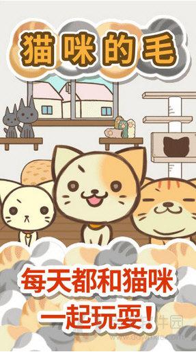 猫咪的毛修改版