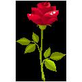 恋爱表白网页生成器 V1.4 绿色免费版