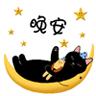 甜蜜猫QQ表情包 +22 免费版