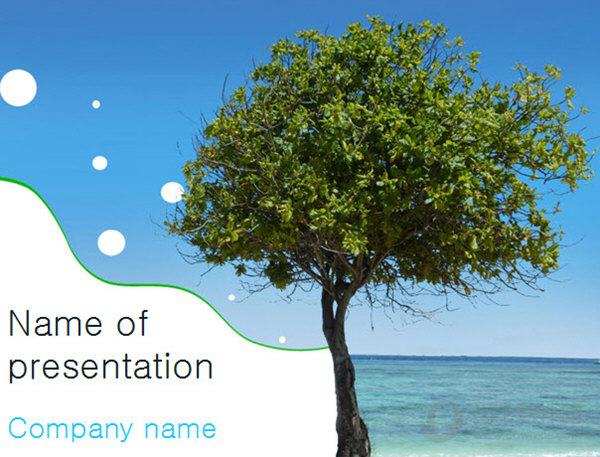 海滨树木主题PPT模板