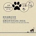 猫咪语录手机主题 V2.7.6 安卓版