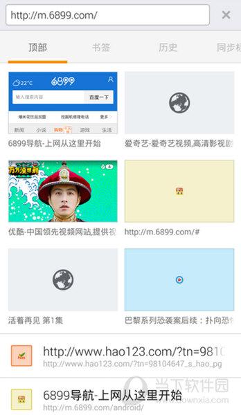 6899浏览器app下载