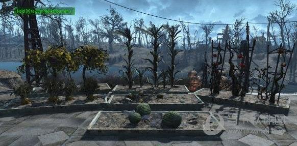 辐射4植物花盆mod