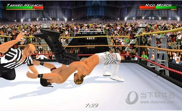 摔跤革命3D完整版