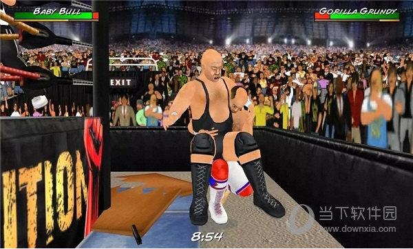 摔跤革命3D破解版