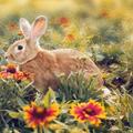 可爱小兔子win7主题 免费版
