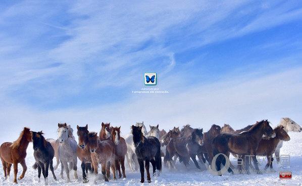 雪地奔马xp登录界面