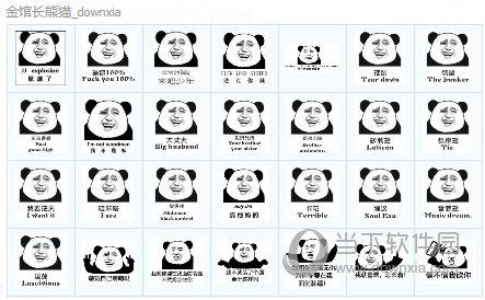 金馆长熊猫qq表情包大全