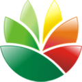 EximiousSoft Logo Designer(logo设计工具) V3.85 汉化版