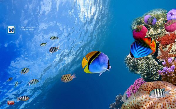 海底世界xp登陆界面