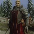 上古卷轴5贵族骑士随从mod V1.0 绿色免费版