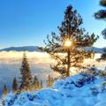 冬日大雪美景win7主题 免费版