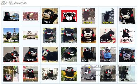 熊本熊qq表情包