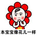 福宝QQ表情包 +9 免费版