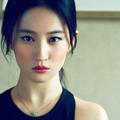 刘亦菲时尚写真xp主题 免费版