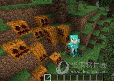 我的世界橡胶树林怎么玩 我的世界橡胶树林攻略图片