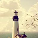 唯美海边灯塔win7主题 免费版
