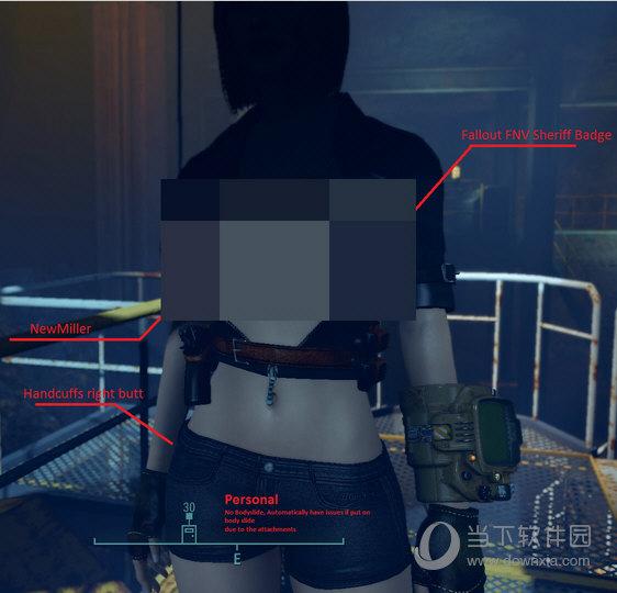 辐射4性感皮衣mod
