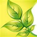 绿色叶子艺术PPT模板 免费版
