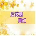萧红后花园鉴赏PPT模板 免费版