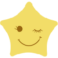 TwinkStar星愿浏览器 V5.0.1000.1906 官方版