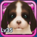 狗狗快跑 V0.29 安卓版
