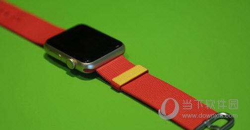 Apple Watch奥运表带多少钱