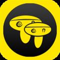 蘑菇伴侣 V3.4 安卓版