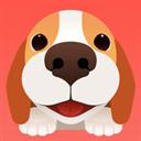 闻闻窝宠物社区 V3.4 苹果版