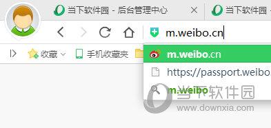 浏览器地址栏截图