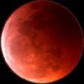 苍月浏览器
