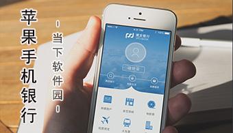 苹果手机银行软件