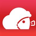小鱼天气 V1.3.13 安卓版