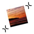 ExactScan pro V16.12 MAC版 [db:软件版本]免费版