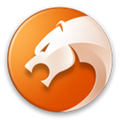 金山猎豹浏览器PC版