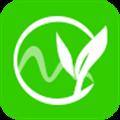 原茶 V0.5.1 安卓版