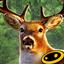 猎鹿人2014无限金币版 V2.9.0 安卓版
