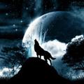 狼人杀桌游助手 V1.2 苹果版