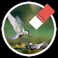 Magic Photo Eraser(图片处理) V1.58 MAC版