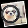 Photo Blur FX(图片处理) V1.0 Mac版