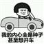 老司机表情包 +18 最新免费版
