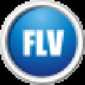 闪电FLV视频转换器 V13.3.0 官方版